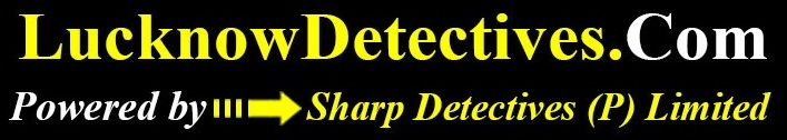 lucknow detectives logo
